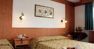 Hotel Nigritella - IT_Civetta_Nigritella_int2_classic