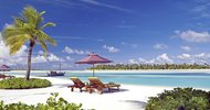 11652372.jpg Hotel Naladhu Private Island Maldives