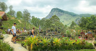 20408658.jpg Ella Flower Garden Resort