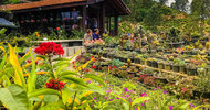 20408668.jpg Ella Flower Garden Resort
